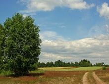 Polish lowlands (by Arkadiusz Parulski)