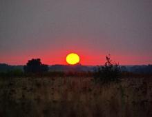 Sundown in the meadow (by Arkadiusz Parulski)