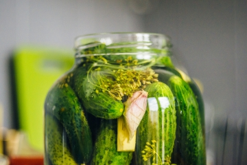 b_360_0_16514043_00_images_pickled-cucumbers-4403298_1920.jpg